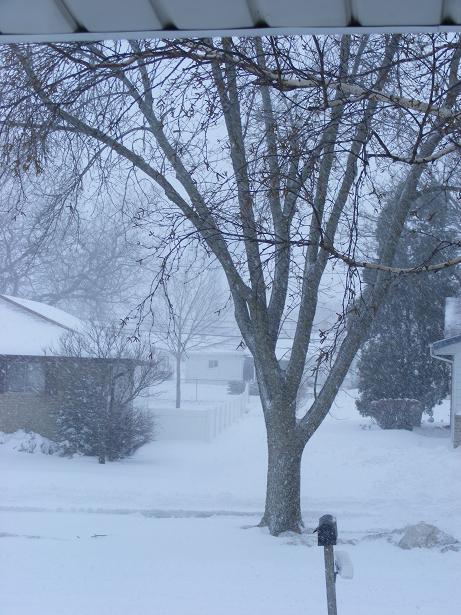 snow-3-21-2008-small.jpg